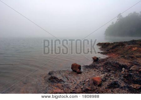 Foggy Nottely