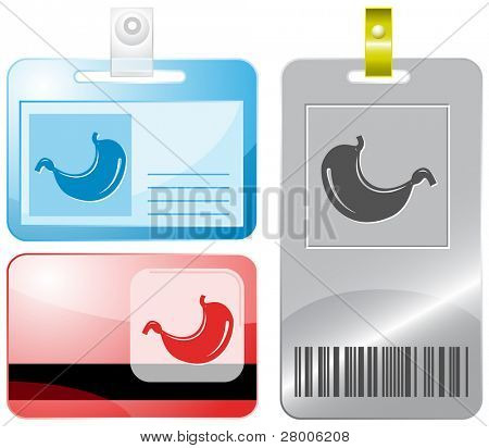 Stomach. Id cards. Raster illustration.
