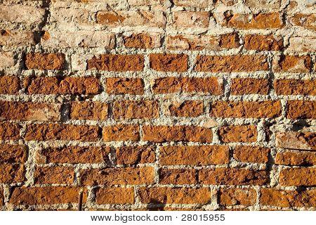 close up photo of old brick wall