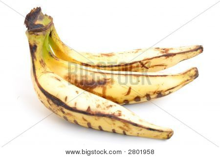 Wegerich-Banane