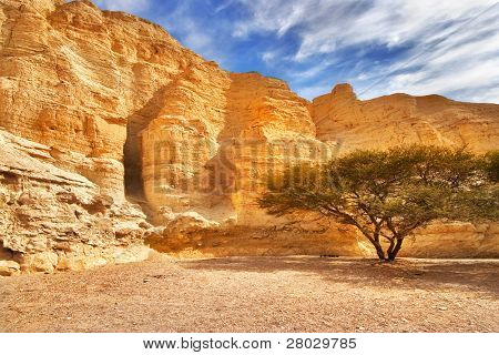 Ancient mountains near to an oasis Ein-Bokek at coast of the Dead Sea