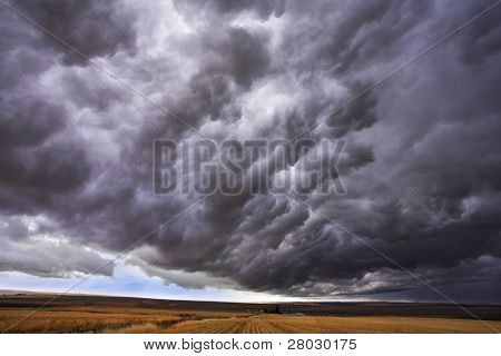 The thundercloud closes the sky above boundless plain in state of Montana. More magnificent pictures from the American and Canadian National parks you can look hundreds in my portfolio. Welcome!