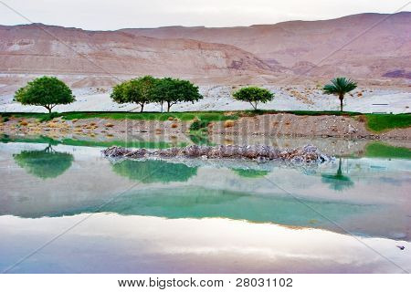 A place for walks on coast of the Dead Sea