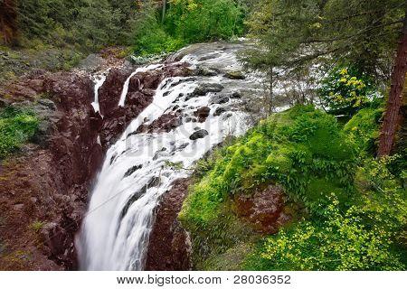 Cascade picturesque falls on island Vancouver - Englishman River Falls
