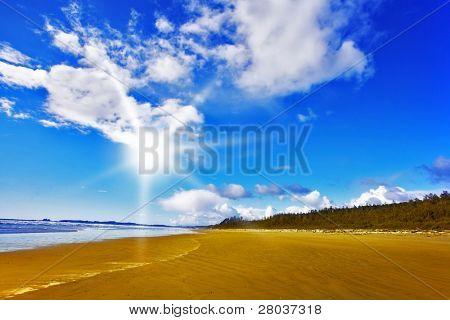 Huge sandy ocean beach on island Vancouver