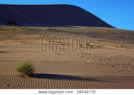 Gentle morning shadows magnificent sand dunes of