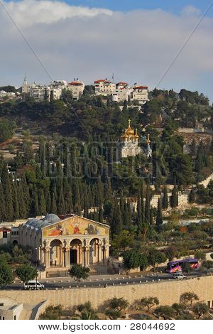 Mount of Olives in Jerusalem. The Church of all peoples, and centuries-old cypress road