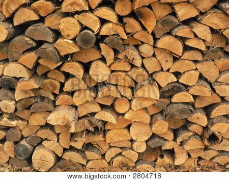 Oak And Pine Wood Pile Logs Trees