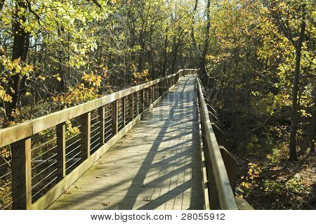 Cheaha State Park boardwalk