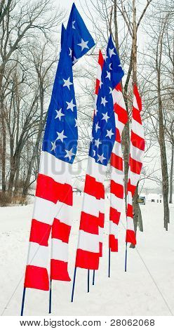 segmented American Flag banners in winter