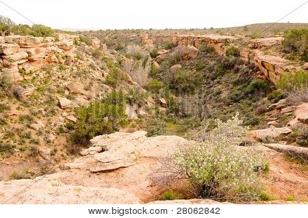 Cañón y ruinas indios nativos americanos Hovenweep N.m.