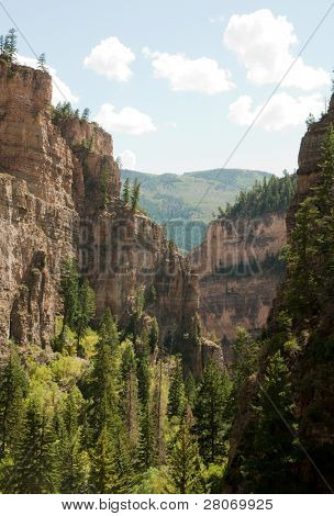 Hanging Lake canyon and pine tree forest