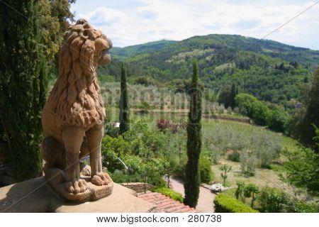 View From Vignamaggio