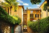 Old Street In Trastevere In Rome, Italy. Narrow Green Street. Tourism And Travel By Italy. poster