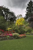foto of garden eden  - Phenomenally beautiful and picturesque garden for walks and supervision over flowers and trees - JPG