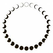 Phases Moon Astronomy Badge Vector Set Monthly Lunar Segments Of The Moon poster