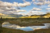 pic of boggy  - The silent river surrounded by fur - JPG