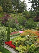 Charming multi-colour flower bed in well-known Butchard-garden in Canada poster