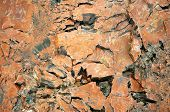 foto of paleozoic  - petrified wood detail - JPG