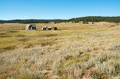 foto of colorado high country  - Hornbeck Farmstead buildings on the plains - JPG
