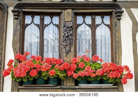 Flowered Window Of Old House In Normandy