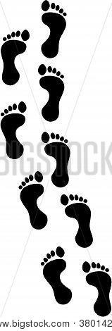Footprint Track