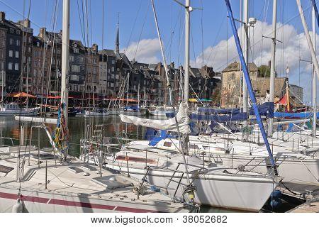 Boats Fill the Harbor