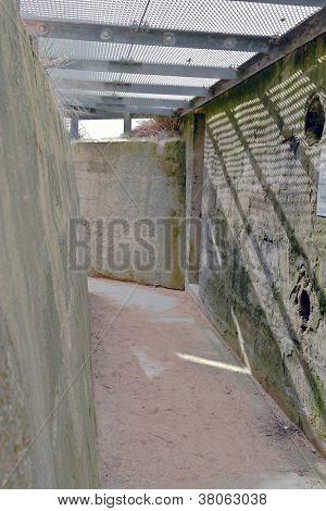 German Bunker--Juno Beach