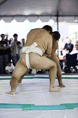 image of loin cloth  - 4-01-07