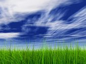 3d green grass over a blue sky with white clouds as background