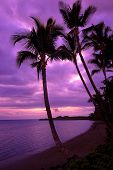 stock photo of beach sunset  - Captured on the beautiful island of Maui Hawaii - JPG