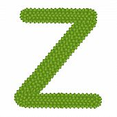 Four Leaf Clover Of Alphabet Letter Z