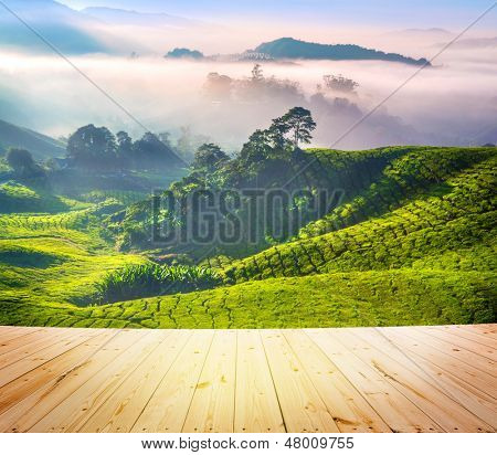 Wood floor over tea Plantations at Cameron Highlands Malaysia. Sunrise in early morning with fog.