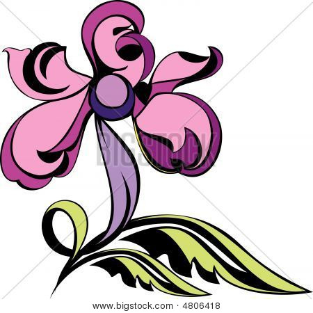 Floral Orchid Abstract