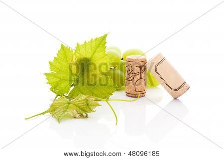 Luxurious Wine Drinking Background.