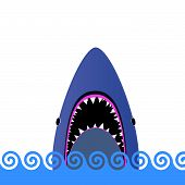 Shark In The Sea Vector Illustration