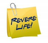 Revere Life Post Illustration Design