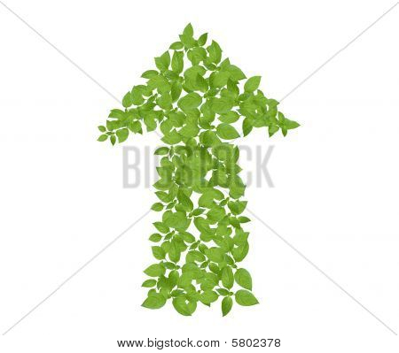 Green plant arrow