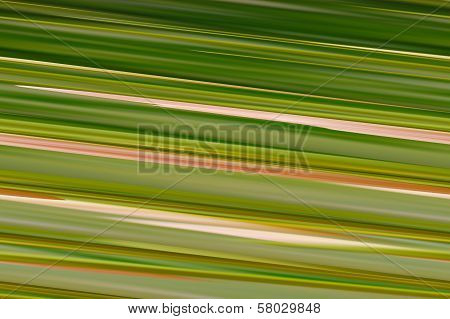 Digital Background Green