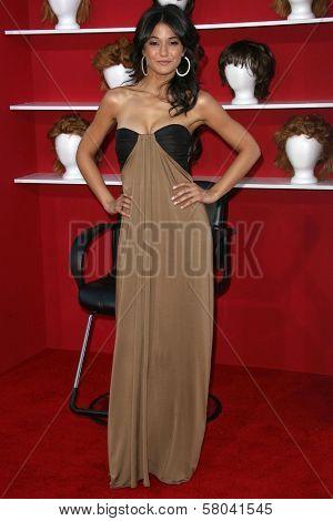 Emmanuelle Chriqui  at the