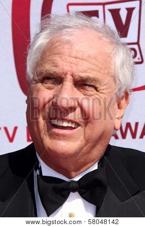 Garry Marshall  at The 6th Annual 'TV Land Awards'. Barker Hangar, Santa Monica, CA. 06-08-08