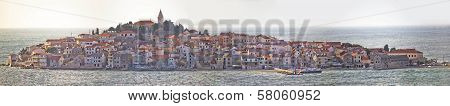 Town Of Primosten Panoramic View