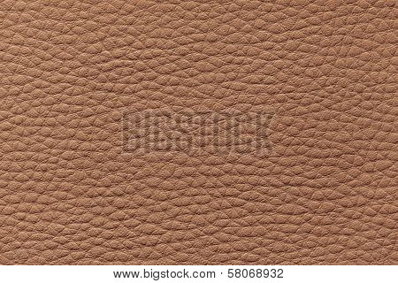 Macro Photo, Brown Leather Pattern Background Texture