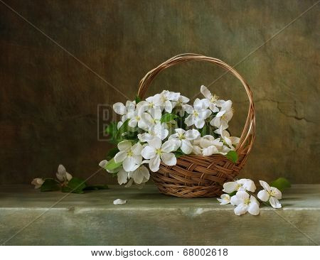 Vintage still life with a basket of flowers appleVintage still life with cherry blossom