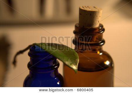 Making Perfume