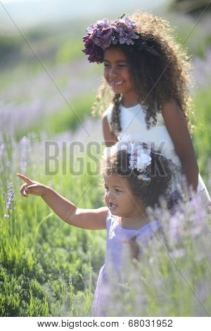 Little Sisters Outdoors in a Lavender Flower Field