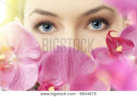 Beauty Eye