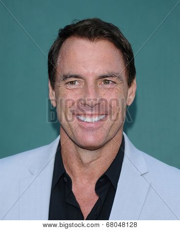 LOS ANGELES - JUL 08:  Mark Steines arrives to the Hallmark's