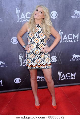 LOS ANGELES - APR 06:  Jamie Lynn Spears arrives to the 49th Annual Academy of Country Music Awards   on April 06, 2014 in Las Vegas, NV.