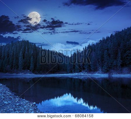 Crystal Clear Lake Near The Pine Forest In  Mountains At Night